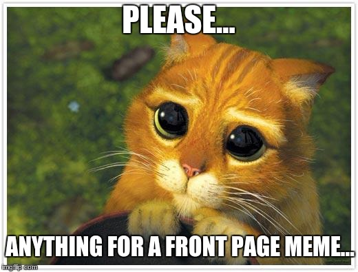Every User Ever | PLEASE... ANYTHING FOR A FRONT PAGE MEME... | image tagged in memes,shrek cat | made w/ Imgflip meme maker