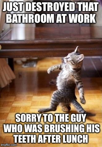 Cool Cat Stroll Meme | JUST DESTROYED THAT BATHROOM AT WORK SORRY TO THE GUY WHO WAS BRUSHING HIS TEETH AFTER LUNCH | image tagged in memes,cool cat stroll | made w/ Imgflip meme maker