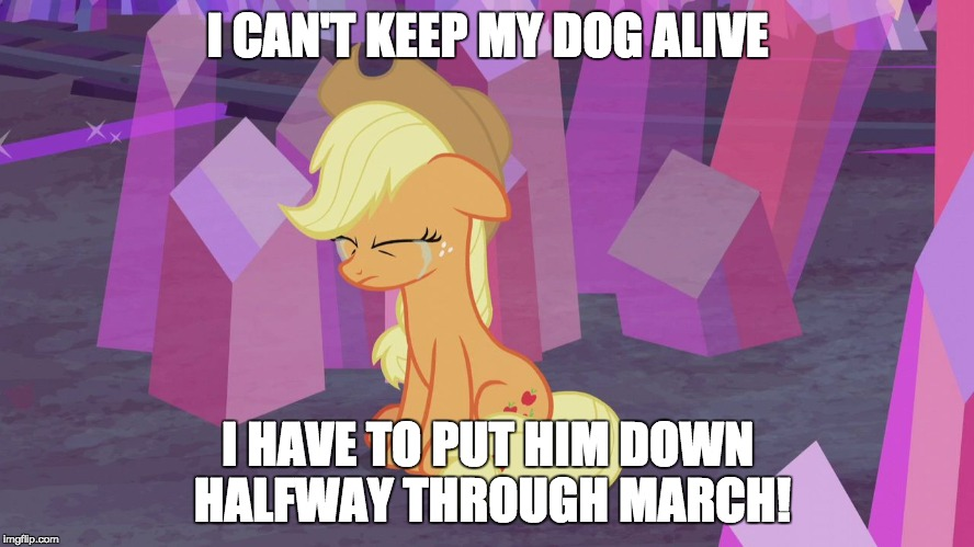 I hate to have it done, but I'm ready for it to be done! | I CAN'T KEEP MY DOG ALIVE I HAVE TO PUT HIM DOWN HALFWAY THROUGH MARCH! | image tagged in first world problem applejack,memes,dog,sadness | made w/ Imgflip meme maker