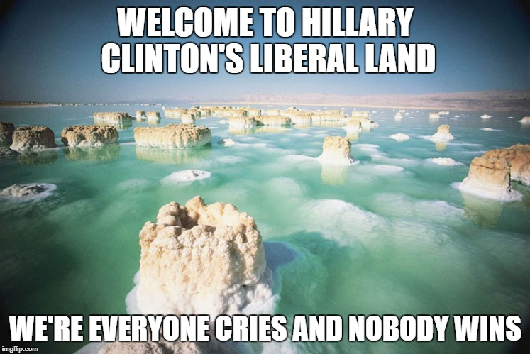Dead Sea | WELCOME TO HILLARY CLINTON'S LIBERAL LAND WE'RE EVERYONE CRIES AND NOBODY WINS | image tagged in dead sea | made w/ Imgflip meme maker