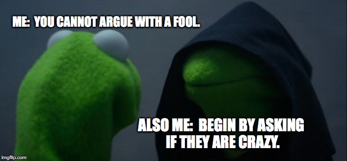 Evil Kermit Meme | ME:  YOU CANNOT ARGUE WITH A FOOL. ALSO ME:  BEGIN BY ASKING IF THEY ARE CRAZY. | image tagged in memes,evil kermit | made w/ Imgflip meme maker