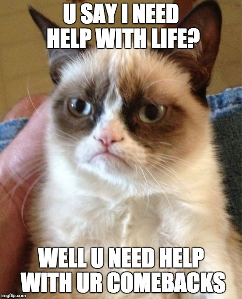 Grumpy Cat Meme | U SAY I NEED HELP WITH LIFE? WELL U NEED HELP WITH UR COMEBACKS | image tagged in memes,grumpy cat | made w/ Imgflip meme maker