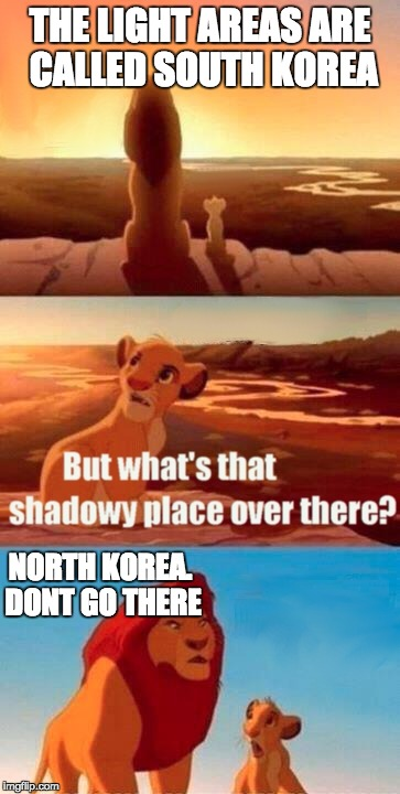 North Korea and South Korea | THE LIGHT AREAS ARE CALLED SOUTH KOREA NORTH KOREA. DONT GO THERE | image tagged in memes,simba shadowy place,north korea,south korea | made w/ Imgflip meme maker