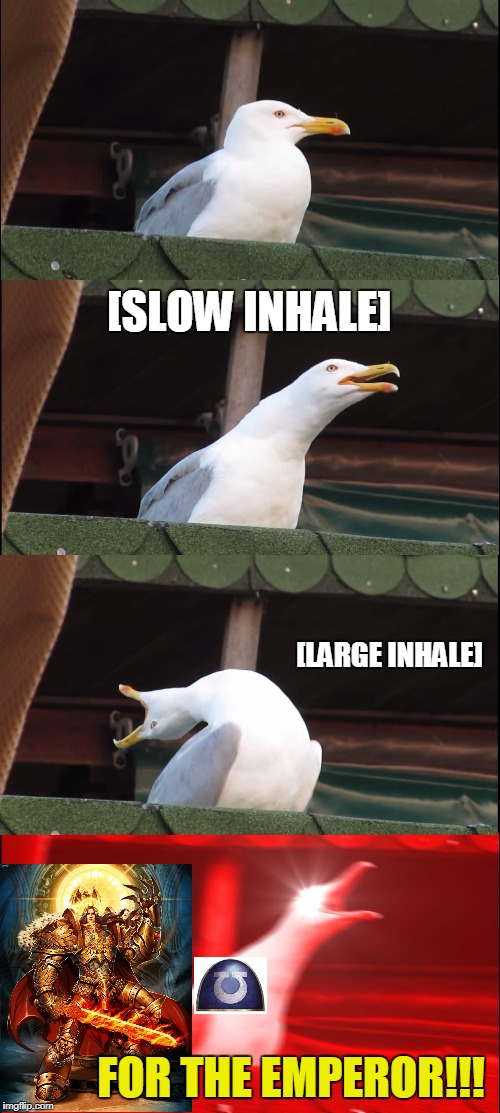 Inhaling Seagull Meme | [SLOW INHALE] [LARGE INHALE] FOR THE EMPEROR!!! | image tagged in memes,inhaling seagull | made w/ Imgflip meme maker