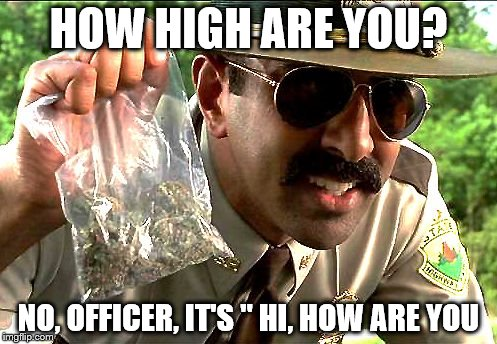 "weedy cop | HOW HIGH ARE YOU? NO, OFFICER, IT'S "" HI, HOW ARE YOU 