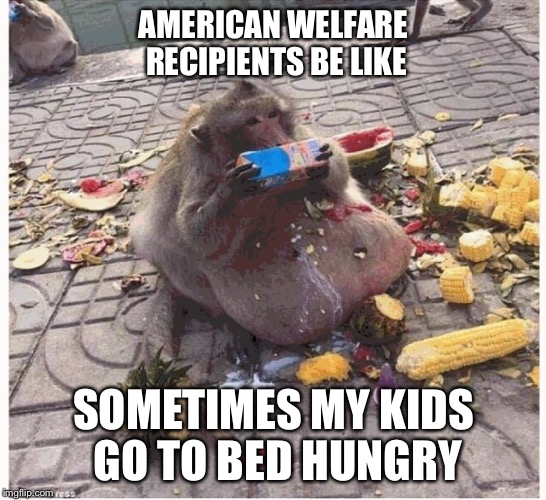 Why is it that everyone on food stamps is fat?  | AMERICAN WELFARE RECIPIENTS BE LIKE SOMETIMES MY KIDS GO TO BED HUNGRY | image tagged in food stamps | made w/ Imgflip meme maker