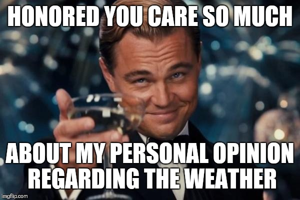 Leonardo Dicaprio Cheers Meme | HONORED YOU CARE SO MUCH ABOUT MY PERSONAL OPINION REGARDING THE WEATHER | image tagged in memes,leonardo dicaprio cheers | made w/ Imgflip meme maker