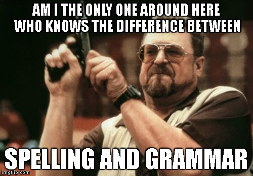 Am I The Only One Around Here Meme | AM I THE ONLY ONE AROUND HERE WHO KNOWS THE DIFFERENCE BETWEEN SPELLING AND GRAMMAR | image tagged in memes,am i the only one around here | made w/ Imgflip meme maker