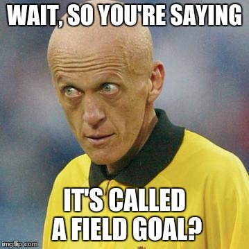 Are you serious? (Football) | WAIT, SO YOU'RE SAYING IT'S CALLED A FIELD GOAL? | image tagged in are you serious football,referee,football,dumb,big head,field goal | made w/ Imgflip meme maker