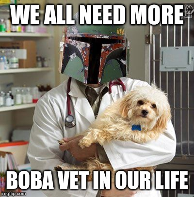 WE ALL NEED MORE BOBA VET IN OUR LIFE | image tagged in boba vet | made w/ Imgflip meme maker