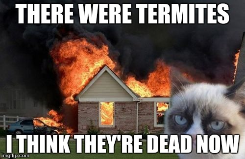 Burn Kitty Meme | THERE WERE TERMITES I THINK THEY'RE DEAD NOW | image tagged in memes,burn kitty,grumpy cat | made w/ Imgflip meme maker