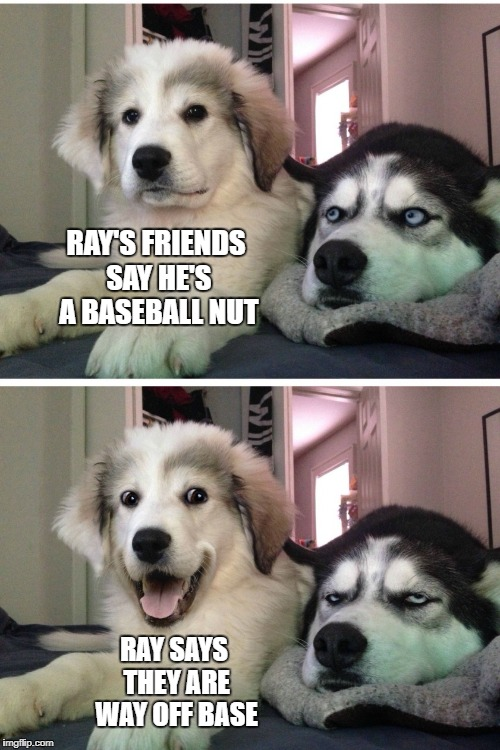 Bad pun dogs | RAY'S FRIENDS SAY HE'S A BASEBALL NUT RAY SAYS THEY ARE WAY OFF BASE | image tagged in bad pun dogs | made w/ Imgflip meme maker