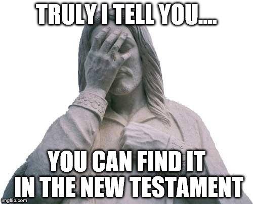 Jesus Facepalm | TRULY I TELL YOU.... YOU CAN FIND IT IN THE NEW TESTAMENT | image tagged in jesus facepalm | made w/ Imgflip meme maker