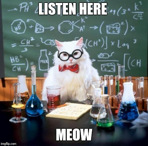 All I could think of was super troopers when I saw this! | LISTEN HERE MEOW | image tagged in memes,chemistry cat,funny memes,meow,super troopers | made w/ Imgflip meme maker