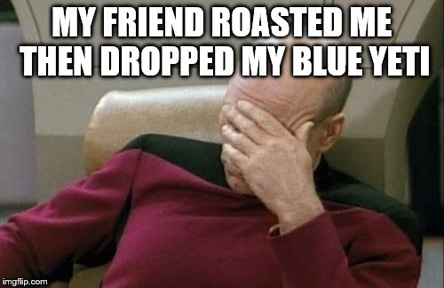 Captain Picard Facepalm Meme | MY FRIEND ROASTED ME THEN DROPPED MY BLUE YETI | image tagged in memes,captain picard facepalm | made w/ Imgflip meme maker