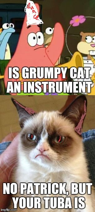 Dumb Patrick | IS GRUMPY CAT AN INSTRUMENT NO PATRICK, BUT YOUR TUBA IS | image tagged in grumpy cat,no patrick | made w/ Imgflip meme maker