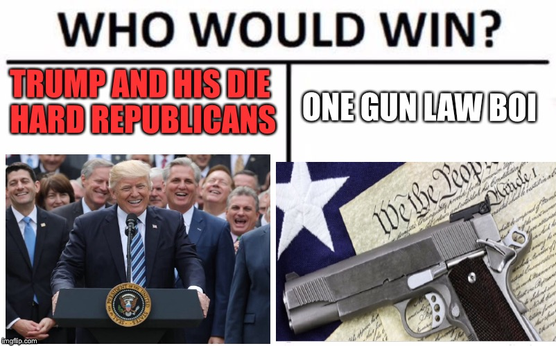 I honestly dont know... | TRUMP AND HIS DIE HARD REPUBLICANS ONE GUN LAW BOI | image tagged in donald trump,gun control,gun laws,2018,school shooting,republicans | made w/ Imgflip meme maker