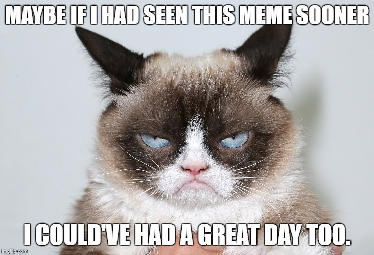 MAYBE IF I HAD SEEN THIS MEME SOONER I COULD'VE HAD A GREAT DAY TOO. | made w/ Imgflip meme maker