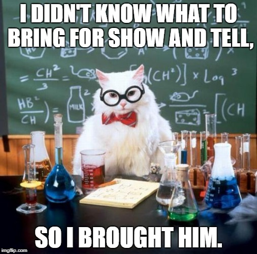 Chemistry Cat Meme | I DIDN'T KNOW WHAT TO BRING FOR SHOW AND TELL, SO I BROUGHT HIM. | image tagged in memes,chemistry cat | made w/ Imgflip meme maker