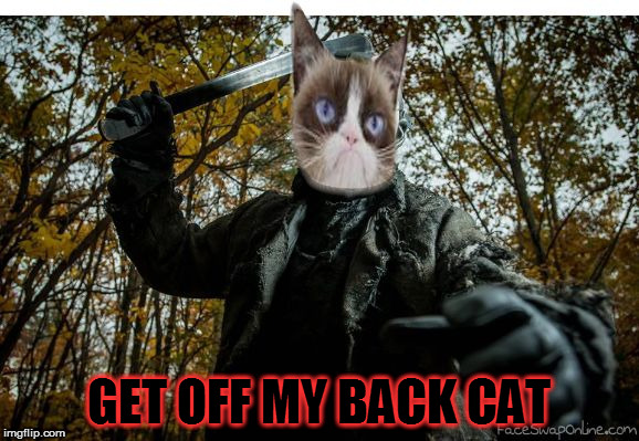 grumpy cat jason | GET OFF MY BACK CAT | image tagged in grumpy cat jason | made w/ Imgflip meme maker