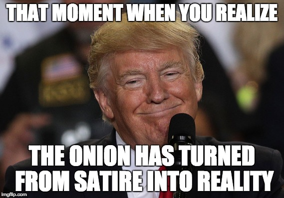 THAT MOMENT WHEN YOU REALIZE THE ONION HAS TURNED FROM SATIRE INTO REALITY | image tagged in that moment | made w/ Imgflip meme maker