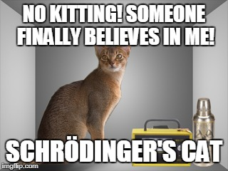 NO KITTING! SOMEONE FINALLY BELIEVES IN ME! SCHRÖDINGER'S CAT | made w/ Imgflip meme maker