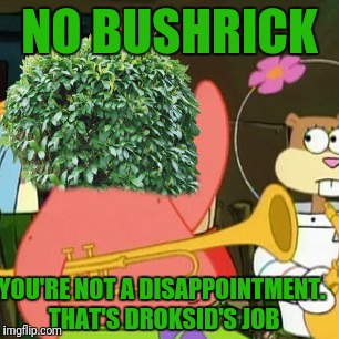 Leave the Disappointing to Me! | NO BUSHRICK YOU'RE NOT A DISAPPOINTMENT. THAT'S DROKSID'S JOB | image tagged in memes,no patrick,bush | made w/ Imgflip meme maker