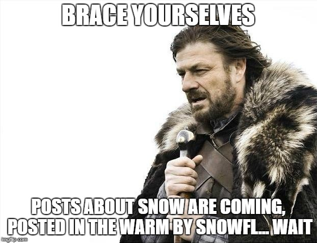 Brace Yourselves X is Coming Meme | BRACE YOURSELVES POSTS ABOUT SNOW ARE COMING, POSTED IN THE WARM BY SNOWFL... WAIT | image tagged in memes,brace yourselves x is coming | made w/ Imgflip meme maker