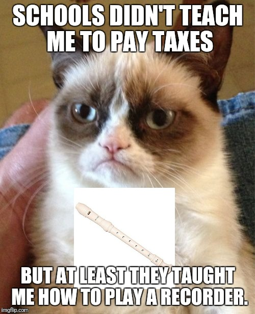 Grumpy Cat Meme | SCHOOLS DIDN'T TEACH ME TO PAY TAXES BUT AT LEAST THEY TAUGHT ME HOW TO PLAY A RECORDER. | image tagged in memes,grumpy cat | made w/ Imgflip meme maker