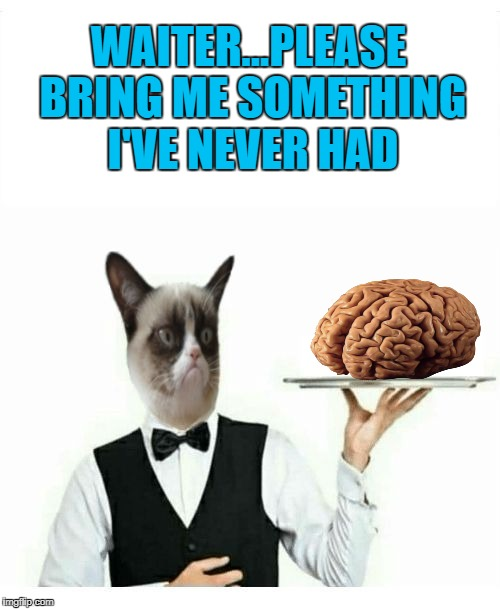 Grumpy Cat knows what you need!!! | WAITER...PLEASE BRING ME SOMETHING I'VE NEVER HAD | image tagged in grumpy cat waiter,memes,no brain,funny,grumpy cat,waiter | made w/ Imgflip meme maker