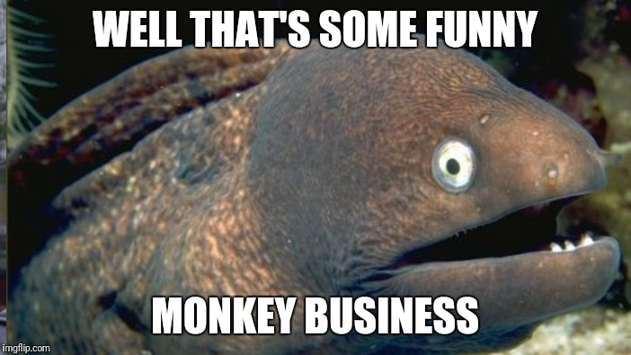 WELL THAT'S SOME FUNNY MONKEY BUSINESS | made w/ Imgflip meme maker