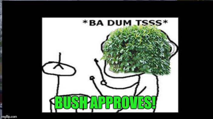 BUSH APPROVES! | made w/ Imgflip meme maker