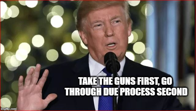 Trump Wants | TAKE THE GUNS FIRST, GO THROUGH DUE PROCESS SECOND | image tagged in donald trump,gun control,gun violence,guns | made w/ Imgflip meme maker