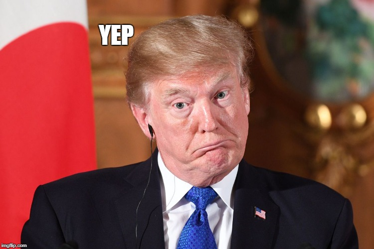 Trump dumbfounded | YEP | image tagged in trump dumbfounded | made w/ Imgflip meme maker