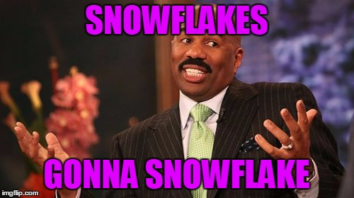 SNOWFLAKES GONNA SNOWFLAKE | made w/ Imgflip meme maker