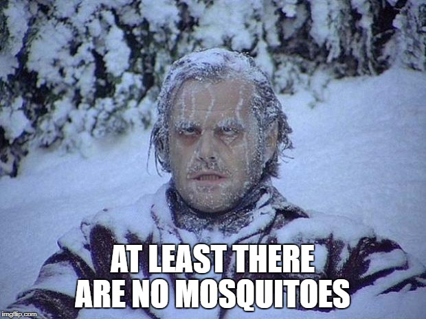 Jack Nicholson The Shining Snow Meme | AT LEAST THERE ARE NO MOSQUITOES | image tagged in memes,jack nicholson the shining snow | made w/ Imgflip meme maker