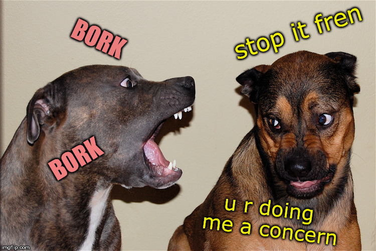 stop it fren u r doing me a concern BORK BORK | made w/ Imgflip meme maker