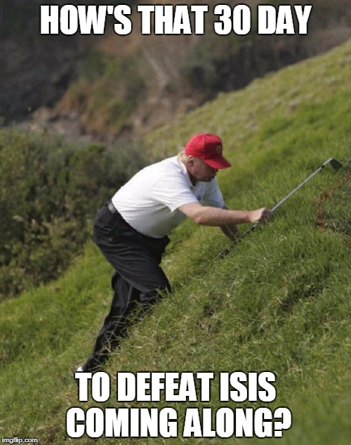 HOW'S THAT 30 DAY TO DEFEAT ISIS COMING ALONG? | image tagged in donald trump hunting for a golfball | made w/ Imgflip meme maker
