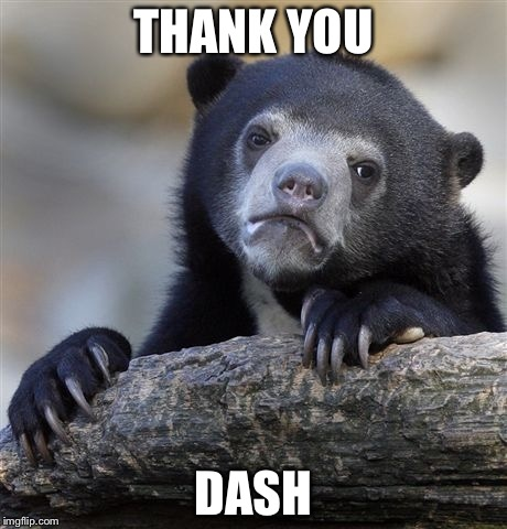 Confession Bear Meme | THANK YOU DASH | image tagged in memes,confession bear | made w/ Imgflip meme maker