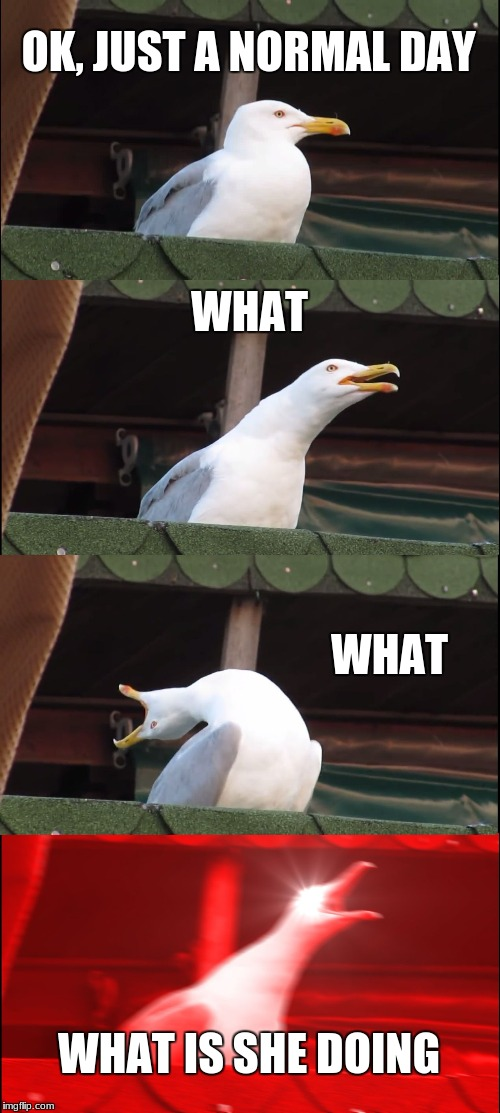 Inhaling Seagull Meme | OK, JUST A NORMAL DAY WHAT WHAT WHAT IS SHE DOING | image tagged in memes,inhaling seagull | made w/ Imgflip meme maker