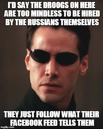I'D SAY THE DROOGS ON HERE ARE TOO MINDLESS TO BE HIRED BY THE RUSSIANS THEMSELVES THEY JUST FOLLOW WHAT THEIR FACEBOOK FEED TELLS THEM | made w/ Imgflip meme maker