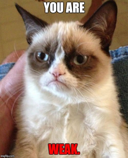 Grumpy Cat Meme | YOU ARE WEAK. | image tagged in memes,grumpy cat | made w/ Imgflip meme maker