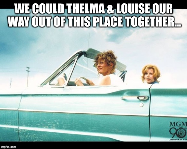 Thelma and Louise | WE COULD THELMA & LOUISE OUR WAY OUT OF THIS PLACE TOGETHER... | image tagged in thelma and louise | made w/ Imgflip meme maker