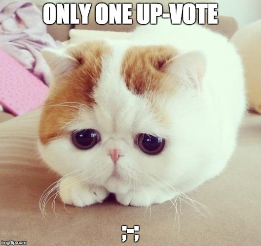 no up-vote syndrome  | ONLY ONE UP-VOTE ;-; | image tagged in sad cat | made w/ Imgflip meme maker