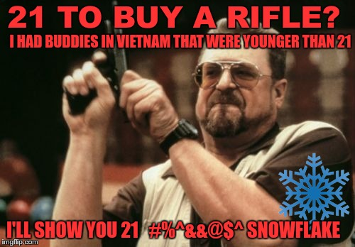 Snowflakes on ice | 21 TO BUY A RIFLE? I'LL SHOW YOU 21   #%^&&@$^ SNOWFLAKE I HAD BUDDIES IN VIETNAM THAT WERE YOUNGER THAN 21 | image tagged in memes,am i the only one around here,rifle | made w/ Imgflip meme maker