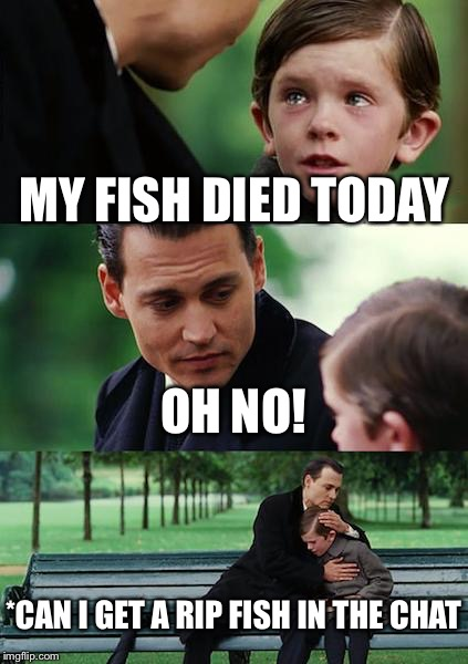Finding Neverland Meme | MY FISH DIED TODAY OH NO! *CAN I GET A RIP FISH IN THE CHAT | image tagged in memes,finding neverland | made w/ Imgflip meme maker