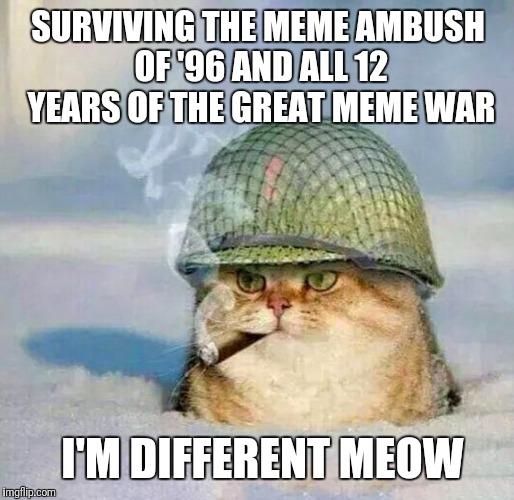 War Cat | SURVIVING THE MEME AMBUSH OF '96 AND ALL 12 YEARS OF THE GREAT MEME WAR I'M DIFFERENT MEOW | image tagged in war cat | made w/ Imgflip meme maker