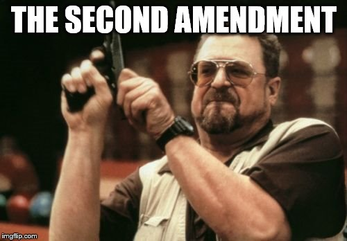 Am I The Only One Around Here Meme | THE SECOND AMENDMENT | image tagged in memes,am i the only one around here | made w/ Imgflip meme maker