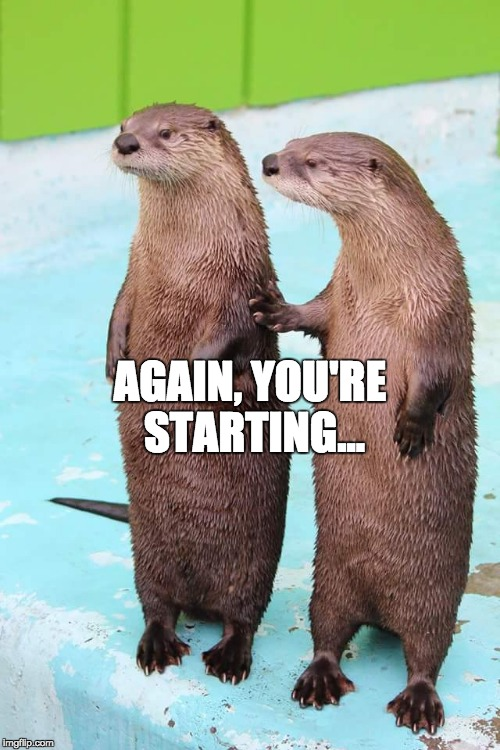 AGAIN, YOU'RE STARTING... | image tagged in otter friends | made w/ Imgflip meme maker