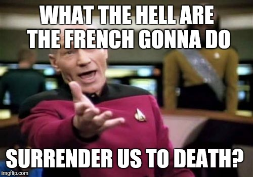 Picard Wtf Meme | WHAT THE HELL ARE THE FRENCH GONNA DO SURRENDER US TO DEATH? | image tagged in memes,picard wtf | made w/ Imgflip meme maker